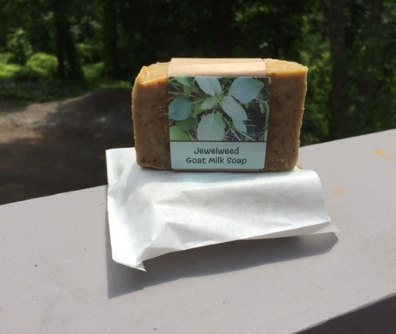 Handmade soap with goat milk with jewelweed and lavender oil